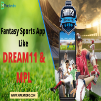 Launch your own Fantasy Sports App Like Dream11 or MPL