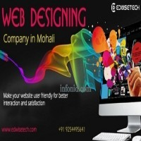 Affordable Website Designing Services In Mohali